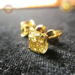 Bông tai kim cương nhân tạo moissanite vàng fancy cushion 8x8 1